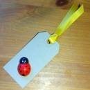 Ladybird Gift Tag