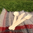 Biodegradable Spoons Forks Knives