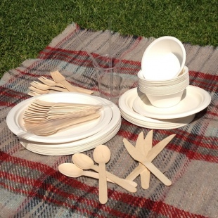 Biodegradable Paper Partyware Set
