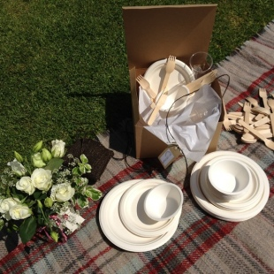 Biodegradable Partyware Set