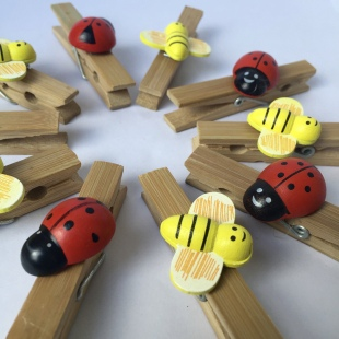 Hand Decorated Bamboo Pegs