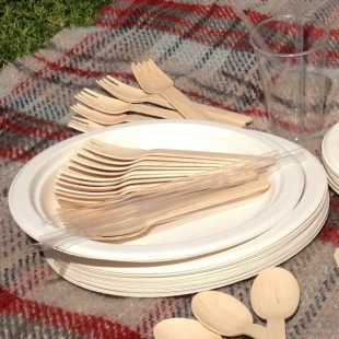 Large Biodegradable Plate