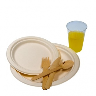 biodegradable party plates