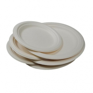 eco party plates