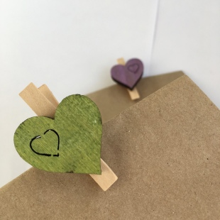 Party Bag Eco Wooden Pegs