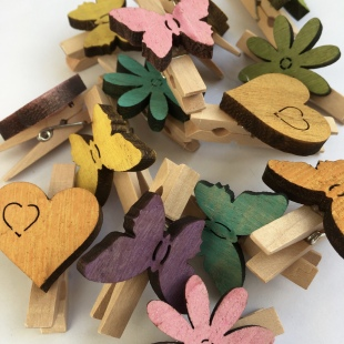 Party Bag Wooden Pegs Butterfly